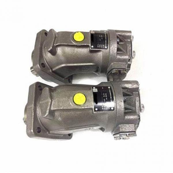 Rexroth A4vg40 A4vg56 A4vg71 A4vg90 A4vg125 A4vg180 A4vg250 Hydraulic Piston Pump #1 image
