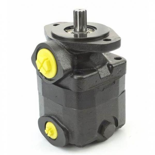 Vickers Vq Series Vane Pump 2520vq-10-12-14-15-17-19-21/4-6-7-8-9-10-11-12-14 #1 image