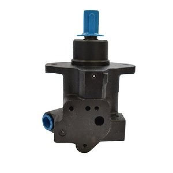 Parker Denison Hydraulic Pump T6c T6DC T6EDC Vane Pump #1 image